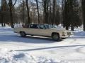 kpss-cars.ru-caddilac-fleetwood-23